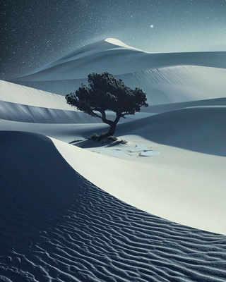 © BENJAMIN EVERETT Остров Лопес, США