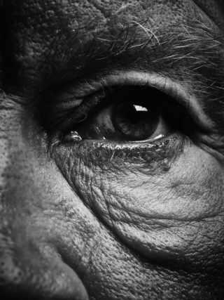 Bill Brandt, Eyes (1960 — 1964)