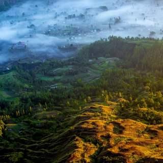 © Илья Ремизов. Основы фотографии. Преподаватель Иван Князев