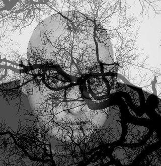 "© Руслан Мухаметов, онлайн-курс ""Better Photo"""